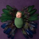 Avatar image of Photographer Elisabetb Franco-Feltham