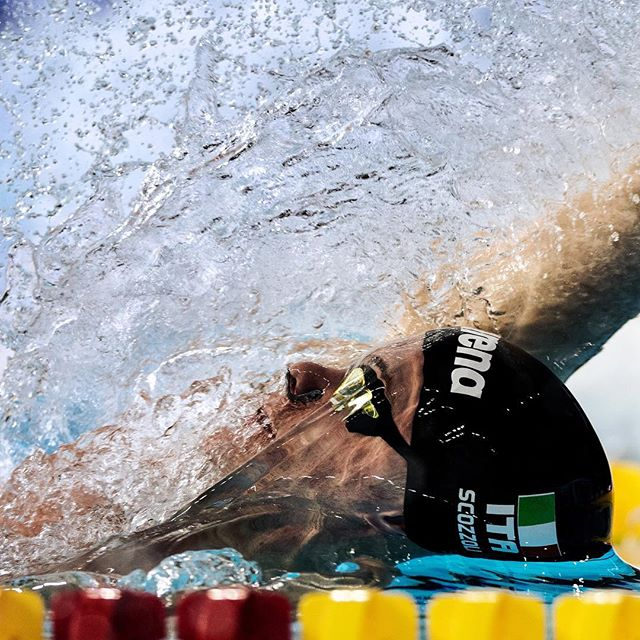 swim swimmer arenawaterinstinct euroswim2017 backstroke