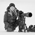 Avatar image of Photographer Dawna Mueller