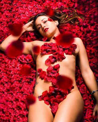 nuriaortizphoto fotografo photographer mifotodr model bookstagram fotografodemoda fashionphotography beautygirl roses🌹 beauty instagood petals book studiophotography photography