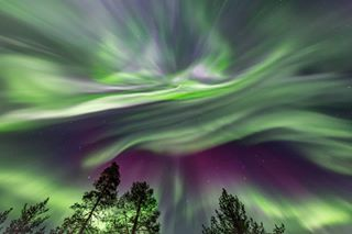 astro astrophoto astrophotography astroscape aurora auroraborealis cosmos explore galaxy instagood landscape landscapephotography longexposure milkyway nature naturephotography nebula night nightphotography nightscape nightsky northernlights outdoors space star stargazing stars travel universe universetoday