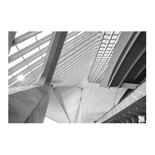 architecture architecture_minimal belgium blackandwhitephotography compostion contrast fullframe geometry guillemins instaminim instaminimal latergram liège mindtheminimal minimalism minimalism42 minimalistic minimalmood minimalobsession minimal_perfection nikond750 nofilter patern perspectives photographerlife pictorine railwaystation station toeristineigenland travelphotography