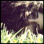 Avatar image of Photographer Silvia Cappuzzello