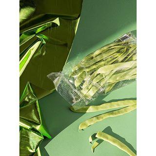 we sun stilllife photography love kermitthefrog jacobreischel green