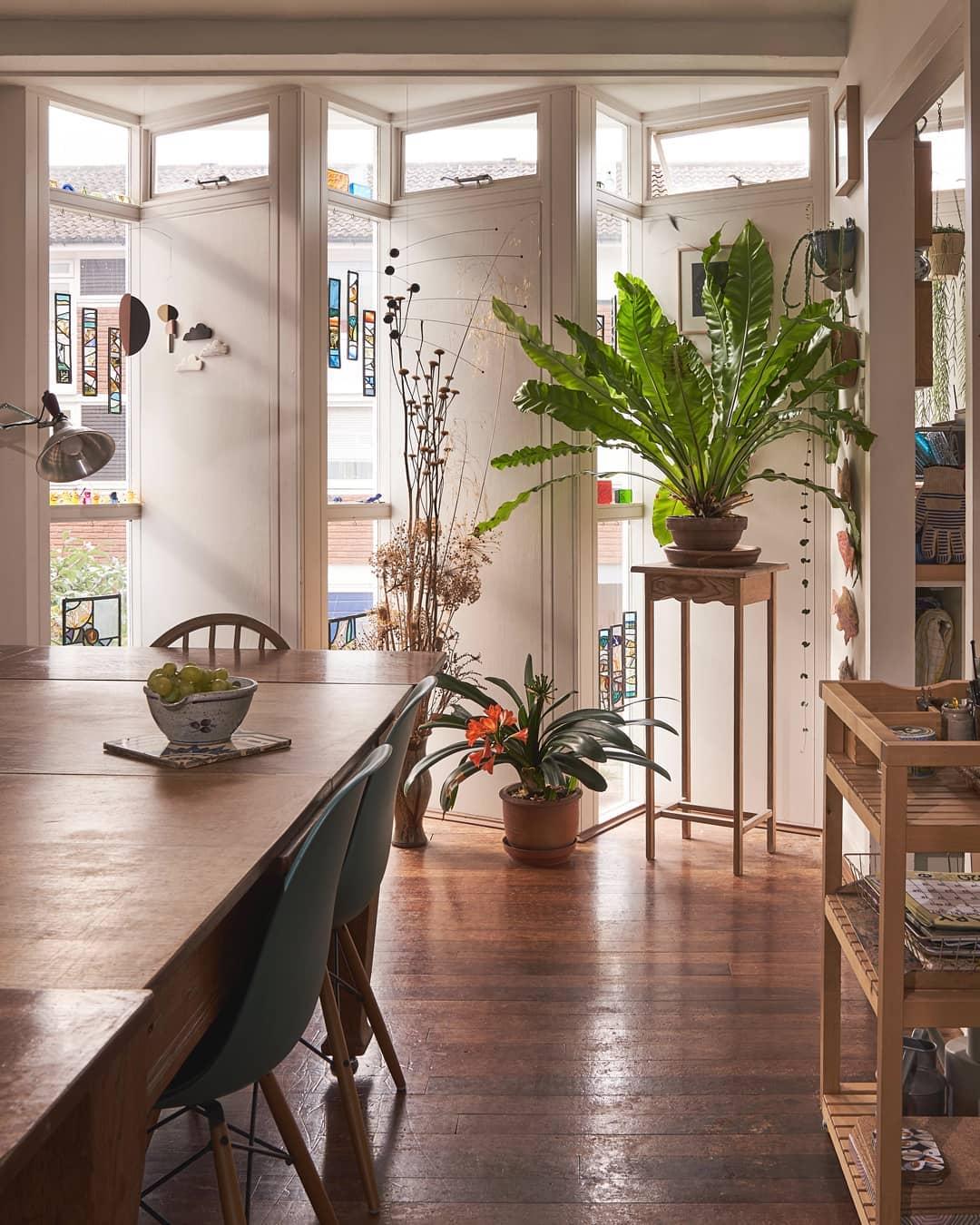 spanhouse 70s botanicalwitches naturallight shadow light minimalism architecture interiors interiordesign