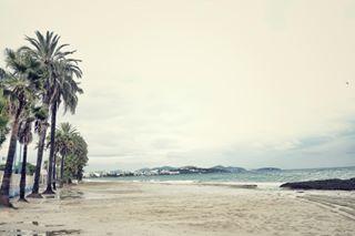 beach ibiza landscape playadenbossa