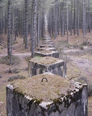 30 arcaswiss filmphotography photobook scotland thelaststand