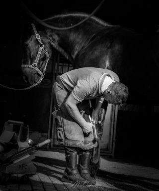 bnw_lumeilio bnw_greatshots bnwphotography bnw ic_bw blackandwhitephotography blacksmithing blacksmith friesianhorse friesian horseblogger seelenpony horsemodel pferdeliebe animal pferdefotografie pferde horsegram cutehorse horseshows horsephotographer horseworld welovehorses instahorse horselove horsepower horseportrait horsesofinstagram horsephoto horse