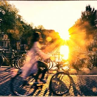 summerfeeling goodmorning radlzurarbeit cycling cycletowork amsterdamcycling morgensonne lovecyclingtogether radfahren amsterdam summer sunshine