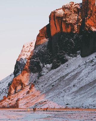 iceland icelandichorse