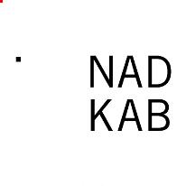 Avatar image of Photographer Nader Kabbany