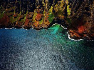 linkinbioandonmyrightarm fosterthedifference unafraid pushingthecraft IOwnTheColors iamatolerantrebel usa hawaii kauai wanderlust