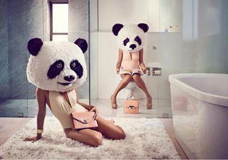 portrait panda personalwork conceptual