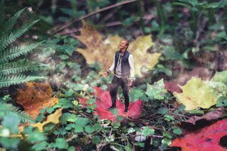 colors happy feel prana photoshop conceptualphotography photography leaves autumn
