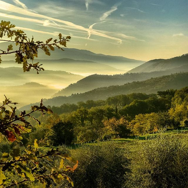 todays landscape hdriphoneographer procameraapp pictureoftheday iphone7plus pontassieve shotoniphone landscapephotography iltrebbiolorelais autumncolours trebbiolorelais todayspicture morningscene tuscany today landscapers hdr_professional autumn🍁 lightroomcc foggy fiesole toscana autumn valleyfog hdr morningscenes