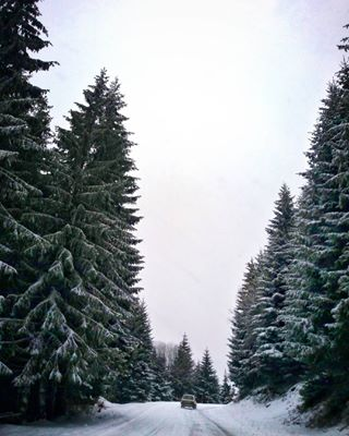 mountains david serbia snapseed giants odin photography kopaonik nature photooftheday snow goliath travel