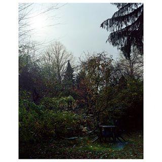welcome urbanphotography füreindeutschlandindemwirgutundgerneleben laubenpieper real kleingarten schillerkiez onlyinberlin neukölln ihavethisthingwithberlin