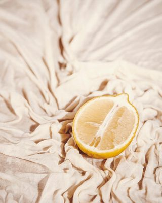 lemon paris studio light stilllifephotography stilllife photo fruit citron photography
