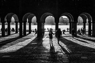 bnw_rose blacknwhite_perfection shadow stockholm photography blackandwhitephotography pentax bnwmaster ig_gregor lightroom