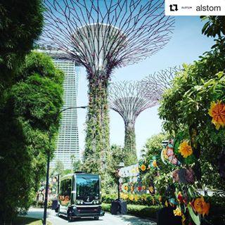 alstom easymile ez10 repost singapore smartmobility transportation urban