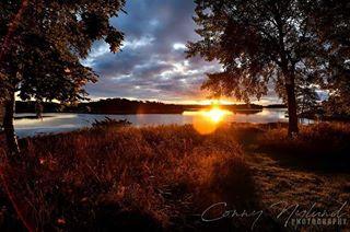 sunset nikoncaptures scandinava d500 naturephotography nikon nikonnordic nofilters