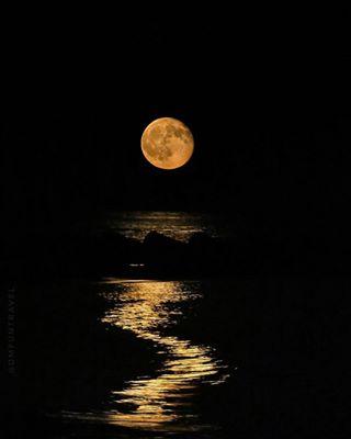 lenstogether dmfuntravel moonlight night liveforthestory summer lenstogethershare baixpenedès catalunyaexperience moon instacunit penedèsmarítim lluna canong3x canon photography aniver5aridc cunit livemoments platjadecunit mediterraneamente estiu bcnmoltmes