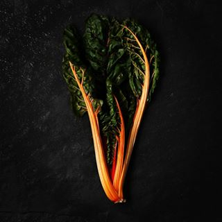 organic foodphotography vegetables