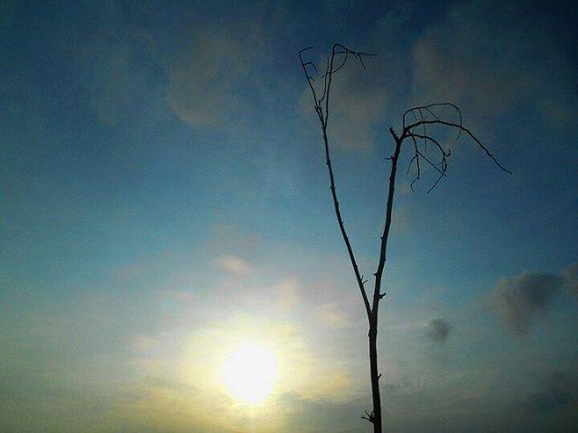 springirl___ photo: 0