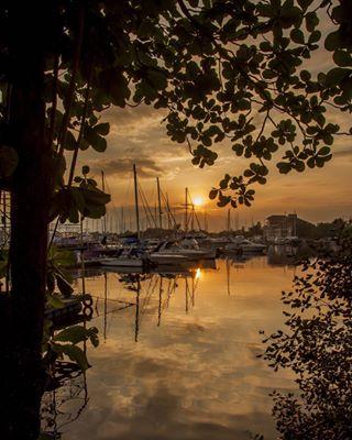 subicbay nikonph nikonphotography nikon goldenhour tropic tropical yatch lightsandshadows nikonphoto sailing d90 sunset nature reflection nikon📷 photography sail natgeoinspires subic