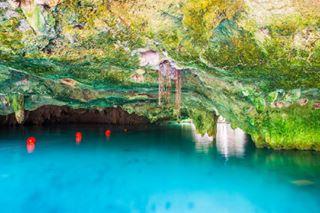cenote explore mybigtrip inspire mexico polarsteps exploretheworld traveling exploretheglobe traveltheglobe grandcenote stalactites tulum travel discover cave travelinge naturalpools traveltheworld clearestwatersever