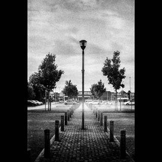 symetry filmisnotdead decathlon clouds belgium photographer canona1 instagram parking 50mm lightroom floorlamp light lines backandwhite youngphotographer photoshop afternoon canon lamp bnw tree sky belgique
