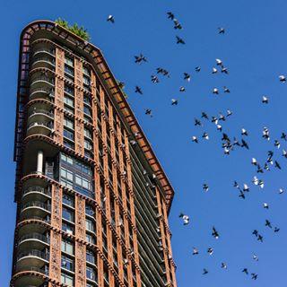 vancity architecture vancouver