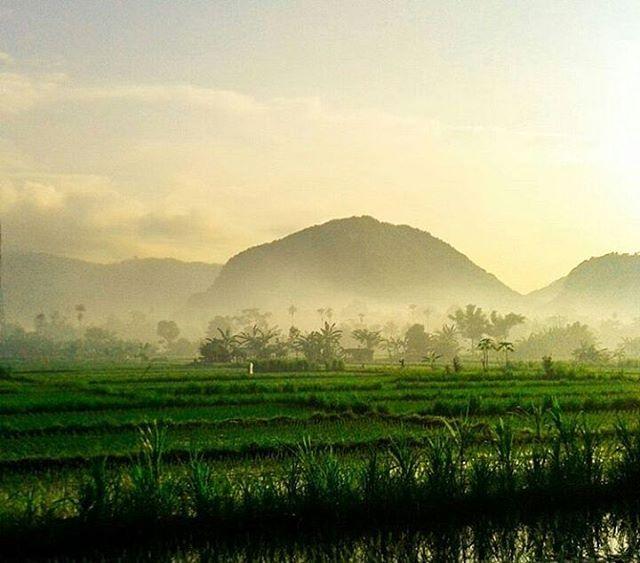 dwikapraman_ photo: 1