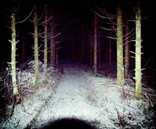 nature snow blackforest blackhole trees night path dark forest