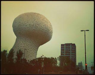 mix fog groundinthesky monumental mashup sky mushrooms