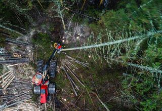 clearcutting djiphantom4proplus dronephotography droonifoto droonifotograaf forestry harvester heavymachinery industrialphotography komatsu komatsu9115 lageraie