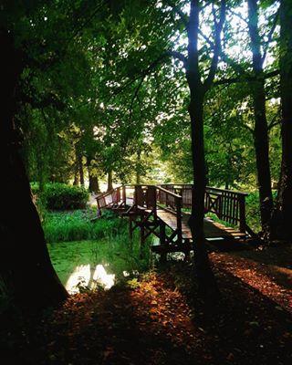 park magical photo autumn nature sunlight trees arboretumopeka autumn🍁 water photography castle oldbridge lake