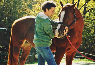 nature photo calm horses pferd yinyang photography outdoor horseshiatsu shiatsu horse conection pferde autumn peace