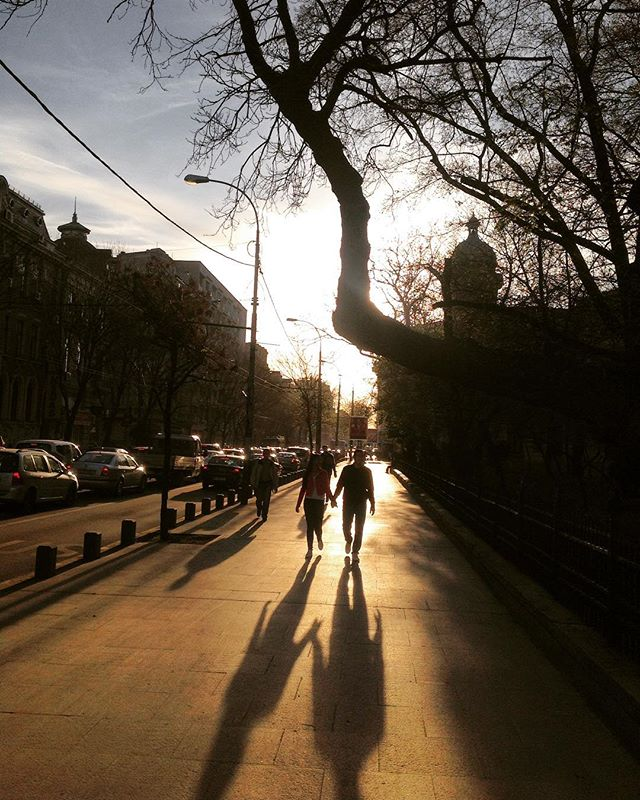 street streetphoto holdinghands romania handinhand citytripme lobsterspring love spring ig_bucharest shadow shadows streetphotography walkingonsunshine streetlife bucharest together we_love_romania romaniamagica urban ig_romania bucuresti thisisbucharest contrast couple neverletgo tree sun enjoybucharest peoplelikeus