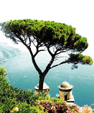 amalficoast sea travel