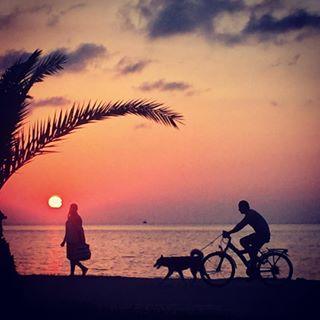 sunset girl batumi georgia dog blacksea bicycle თავისუფლება