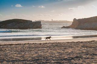 atlantic beach coast flare light peniche photography sunset walk