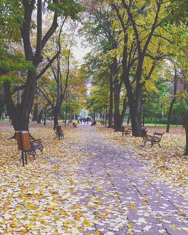alexandragabita photo: 0