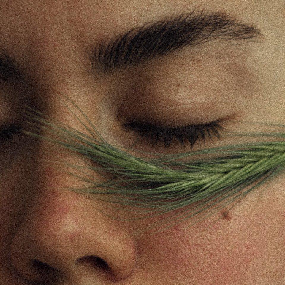Avatar image of Photographer Aks Huckleberry