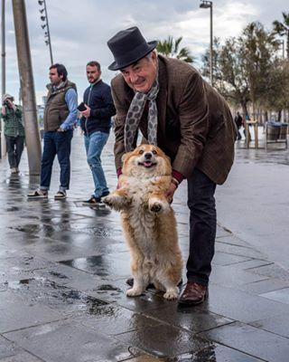 i_see_dog_people photo: 1