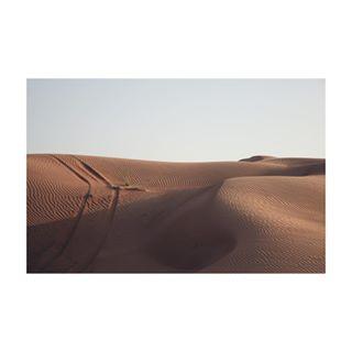 hippomag desert photography dubai