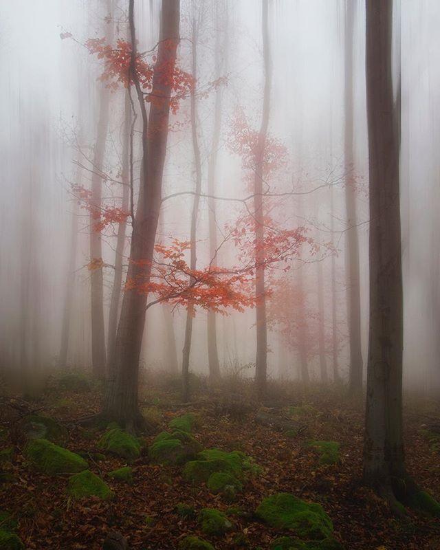 auroraminna photo: 1