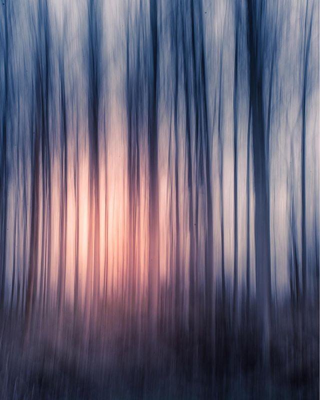 auroraminna photo: 2