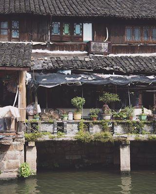 wuzhen tlpicks tb travelgram china igerschina traveller culturetrip igersworldwide