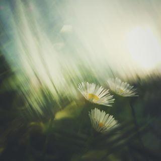 russia iphonephoto nnov autumn attistic nizhniy digitalart nature nn